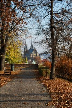 Find images and videos about autumn, czech republic and Brno on We Heart It - the app to get lost in what you love. Autumn Scenes, Czech Republic, Find Image, Cool Pictures, Sidewalk, Country Roads, Landscape, Nice, Travel