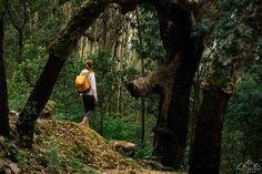 Trilho das Cascatas - Viagens à Solta Nature, Travel, Waterfalls, Drop, Railings, Paths, Landscape, Centre, Places