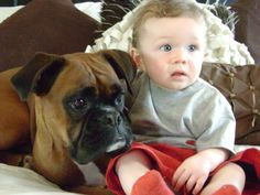 Babies and Boxers