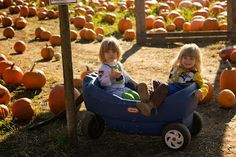 Creating fall family traditions