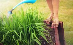 There might be a scientific reason why getting our hands dirty makes us feel good.