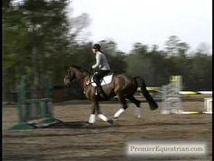 Phillip Dutton Pro Tips - Horse Jumping Tips - Horse Jumps