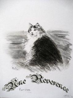 Esquisses en noir et blanc, chat persan, fusain Creations, Persian Language, Charcoal Picture, Sketching, Black White, Cat Breeds