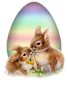 - My Desktop Nexus Vintage Easter, Past, Bird, Nutella, Desktop, Pictures, Animals, All Flowers, Easter Activities