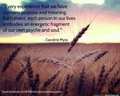 Every experience that we have contains purpose and meaning. Each event, each person in our lives embodies and energetic fragment of our own psyche and soul ☼ Caroline Myss Quotes