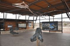 Gallery of Giants - the new Fossil Discovery Exhibit's central pavilion - photo courtesy National Park Service/Don Corrick
