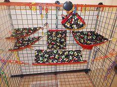 Image result for Sugar glider cage sets
