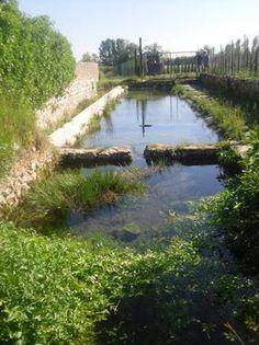 Un des deux lavoirs de Saint-Siffret Gard (30)