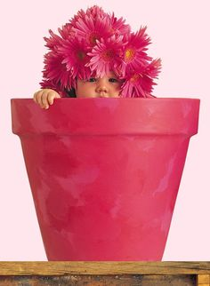 UMA QUINTA-FLOWER ROSA PRA TODAS!!! | Flickr - Photo Sharing!
