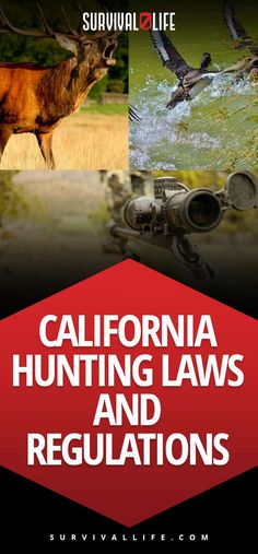 California Hunting Laws and Regulations