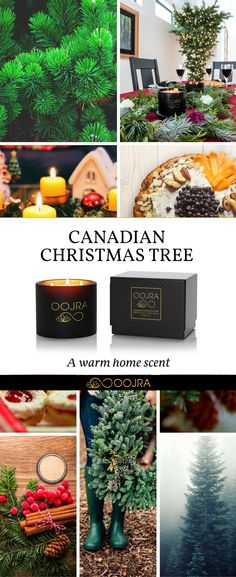 Canadian Christmas Tree Home Fragrance | Soy Wax Candles | Hostess Gift | Guest Room Decor | Holiday Essentials | Make Your Home Smell Holiday Ready Here: https://shop.oojra.com/collections/candles/products/canadian-christmas-tree-essential-oil-soy-wax-candle?variant=42984950924&utm_source=pinterest.com&utm_medium=social&utm_campaign=Holiday2017&utm_content=SWCCanadianChristmasTreeCollageWarmHomeScent