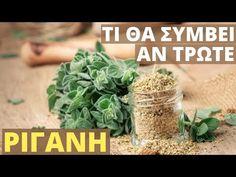 How To Dry Basil, Remedies, Health Fitness, Herbs, Plants, Food, Earrings, Youtube, Ear Rings