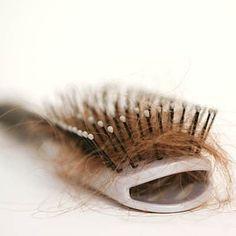 lupus  #hairstyle #longhair #haircut #curlyhair #naturalhair #hairstylist #hairstylist #redhair #haircolor #shorthair #style