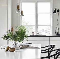 Nordiska Kök white kitchen 6.jpg