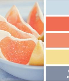 Sliced Grapefruit Palette