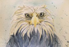 Watercolor, Painting, Animals, Art, Pen And Wash, Art Background, Watercolor Painting, Animales, Animaux