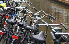 Bikes and Boats in Spring - Bussines and Marketing: I´m looking forward for a new opportunity about my degrees dinamitamortales@ gmail.com