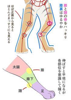 動物要素の強さを変えてみよう! 獣人(ケモノ)の描き分け講座|イラストの描き方 6/6 How to Draw Different Styles of Kemono | Illustration Tutorial 6/6