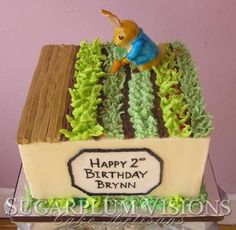 Peter Rabbit cake. So cute!