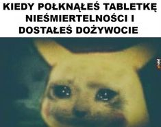 Śmieszne Memy i Obrazki na Jeja.pl - Nowe Very Funny Memes, Cry For Help, I Cant Even, Cringe, Fnaf, Cyberpunk, Haha, Funny Pictures, Jokes