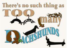 Dachshunds - So True!