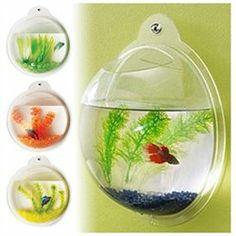 FISH BUBBLE - DELUXE ACRYLIC WALL MOUNTED FISH TANK W/BONUSES http://wkup.co/cash_back/OTI1MTM2NTUw/MTA1Mjk2NQ==