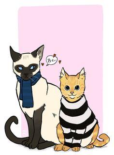 Kitties Sherlock & John. Cute, isn't it?