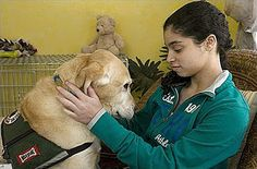 """Dr. Deb: Therapy """"Service Dogs"""" ~""""Psychiatric Service Dogs are amazing helpers and companions for children and adults with mental health issues. I love seeing service dogs when I'm out and about in the world. What kinds of tasks can Psychiatric Service Dogs be trained to do? Take a look:"""