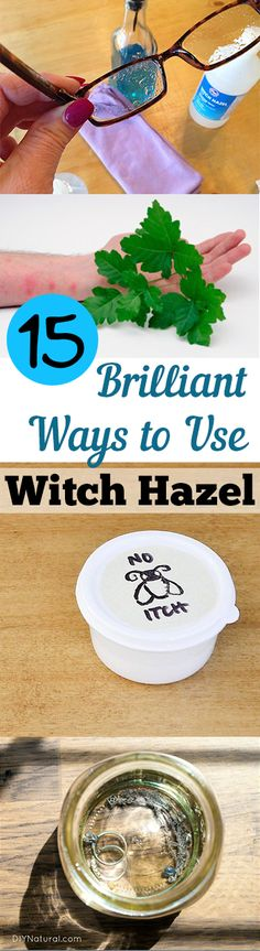 15 Brilliant Ways to Use Witch Hazel. Witch hazel has many uses. Find out what you can do with it here. #witchhazel
