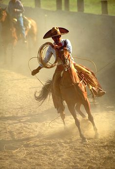 Rodeos! I love them! cool pic