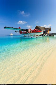 Maldivian Air Taxi 8Q-MAX aircraft at Off Airport - Maldives photo