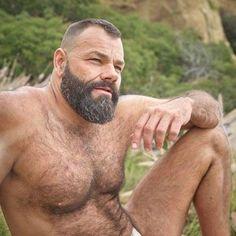 Huge Muscle Bears