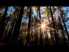Il paradiso nelle montagne!! - VIDEO STUPENDO - Guardalo
