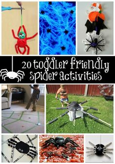 20 toddler friendly spider activities