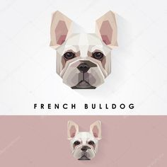 depositphotos_77863442-stock-illustration-french-bulldog-dog.jpg (1024×1024)