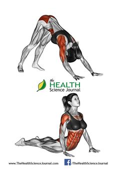 © Sasham | Dreamstime.com - Fitness-Yoga exercising. Indian push-ups. Female