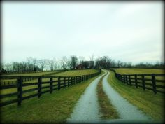 The entrance to one of the Kentucky Horse Farms we toured today was AWESOME. Reminded me of Tara but without the trees. The inside of this house was lovingly restored and inviting.I think of all of the farms this one was my favorite. There are many beautiful farms for sale in Central KY that for a savvy buyer to buy at a good price before spring. Message me if you want a list sent to your email.