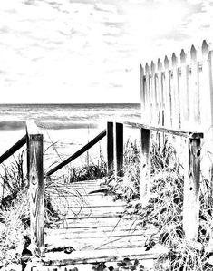 Coloring page, beach boardwalk, digital download, adult coloring page, coloring page, tropical, beach scene, beach fence image