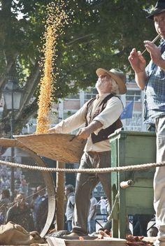 Festival delle Sagre - Asti 2°week-end of September