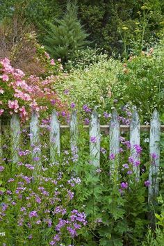Beautiful Cottage Garden with a Picket Fence
