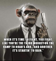 - Funny Monkeys - Funny Monkeys meme - - The post appeared first on Gag Dad. Funny Shit, Stupid Funny Memes, Haha Funny, Hilarious, Funny Humor, Motivational Quotes, Inspirational Quotes, Warrior Quotes, Sarcastic Quotes