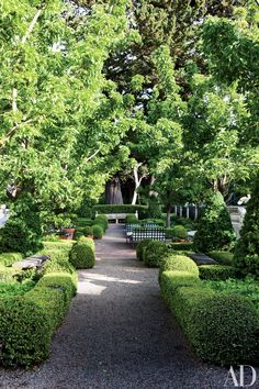 Boxwood hedges border a path in this San Francisco–area garden, which was updated by Strata Landscape Architecture; the cushions on the outdoor furniture are clad in a DeLany & Long fabric.