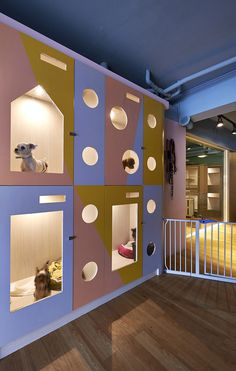 Hotel Petaholic for Pets - Taipei City, Taiwan