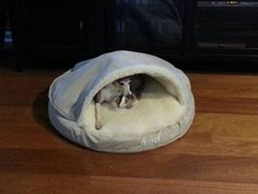 find this pin and more on cozy cave customers by snoozerpets - Cozy Cave Dog Bed