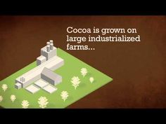 Nestle Cocoa Plan - 10 things you didn't know about cocoa