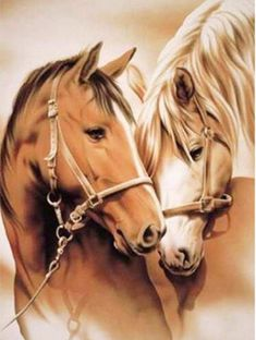 Cross Paintings, Your Paintings, Beautiful Paintings, Farm Animals, Cute Animals, Double Exposition, Mosaic Animals, Horse Artwork, Most Beautiful Horses