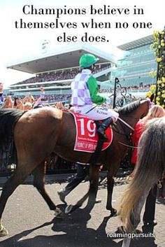 The Race That Stops A Nation Melbourne Cup, Cover Pages, Champion, Racing, Horses, History, Quotes, Animals, Running