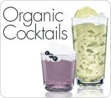 Blackberry Raspberry Absolut Cocktail Recipe - The Daily Green