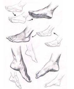 El pie humano mostrando la planta y superficie del pie.