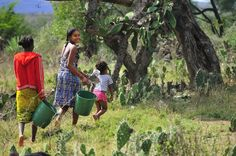 Three girls from the village of Kobokara in southern Madagascar head down to the Mandrare River to fetch water to clean and cook with. Photo © Mark Scherz 2011